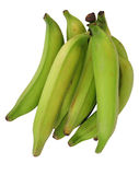 Platanos, also green bananas. Isolated Royalty Free Stock Photos