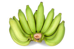 Green bananas isolated  on white background Royalty Free Stock Photo