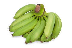 Green bananas isolated  on white background Royalty Free Stock Image