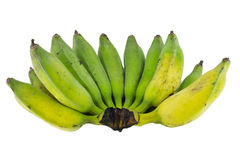 Green bananas isolated on white Stock Photos