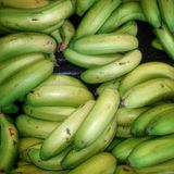 Close up shot of Green bananas in green grocer market Royalty Free Stock Images
