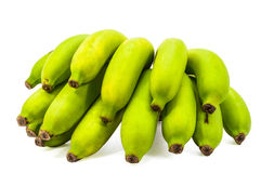 Green Bananas raw bunch. Stock Image