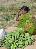 Green bananas and sari Royalty Free Stock Photography