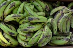 Green bananas Texture stock photo