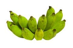 Green bananas on white background. Raw banana on white background Royalty Free Stock Images