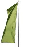 green bandery Obraz Royalty Free