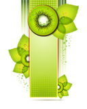 Green banner with kiwi Stock Image