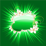 Green banner with magic burst Royalty Free Stock Photography
