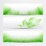 Green banner set Stock Image