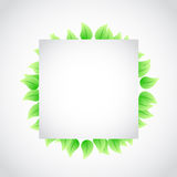 Green banner sign leaves illustration Royalty Free Stock Images