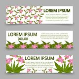 Green banners template with plants and flowers Stock Photography