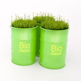 Green barrel of bio fuel royalty free stock photo
