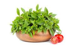 Green basil with cherry tomatoes Stock Photo