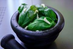Preparing pesto sauce. Green basil leaves on a black mortar for make pesto Stock Photos