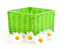 Green basket with flowers Stock Photos