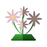 Green basket flowers decoration icon Stock Photos