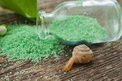 Green bath salt. Chestnut fruits. Royalty Free Stock Photo