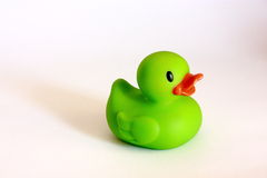 Green bathing duck. Toy isolated on white background Stock Images