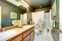 Green bathroom with wood cabinet and shower tub. Stock Photo