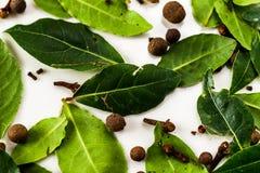 Green Bayblad, kryddnejlika och kryddpeppar på vit arkivfoto