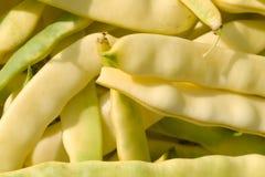Green bean Royalty Free Stock Photo