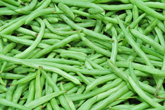 Green bean. In the markets Royalty Free Stock Image