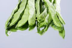 Green bean Stock Images