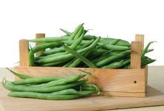 Green bean Stock Photography