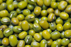 Green bean or mung bean background. Agriculture product, food Royalty Free Stock Photos