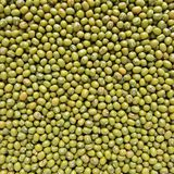 Green bean or mung bean Royalty Free Stock Photo