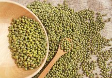 Green bean or mung bean Stock Images