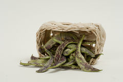 Green bean. Pods spotted beans spilled from the basket Royalty Free Stock Image