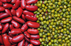 Green bean and red bean background. Agriculture product, cereal, food royalty free stock image