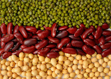 Green bean,soy beans and red bean background .Different types o. F beans. Multi color bean royalty free stock photography