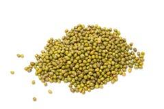 Green Bean Stock Images