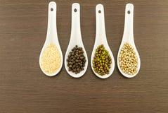 Green bean , white sesame ,black and white pepper in white ceramic spoon Stock Photos