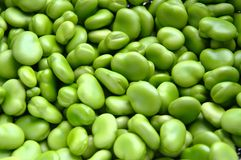 Green Beans. A lot of green beans stock photos