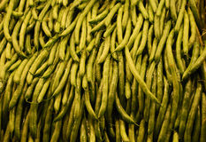 Green beans. Fresh green beans, Green beans (American English), French beans or runner beans (British English), also called squeaky beans are the unripe fruit of stock photos