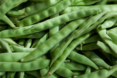 Green Beans Background Royalty Free Stock Photography
