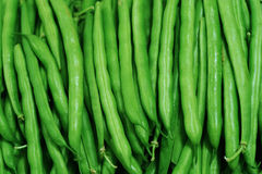 Green beans. Fresh green beans background for design Stock Photo