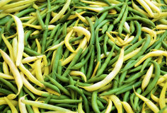 Green beans. Fresh green beans in close up Stock Photo