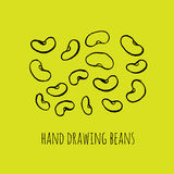 Green beans. Hand drawn sketch set green beans vegetable - eco food vector ink illustration Royalty Free Stock Images