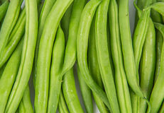 Green Beans III Royalty Free Stock Photos