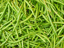 Green beans. Just green beans, lots of them laid flat with stems Royalty Free Stock Images