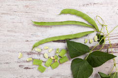 Green beans, legumes. Stock Images