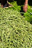 Green beans on a market Royalty Free Stock Image