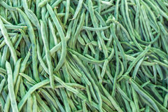 Green beans. Newly harvested beans. Closeup view Royalty Free Stock Photos