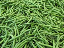 Green beans Stock Photography