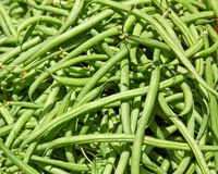 Green Beans for Sale Royalty Free Stock Image
