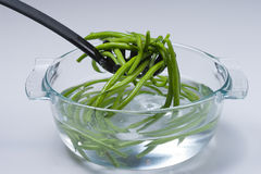 Green beans. In the soup tureen full of water Stock Photography